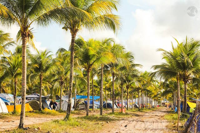 Camping - Tiago Lima